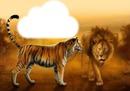 cadre de tigre et lion