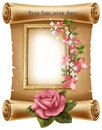 Cc pergamino,marco flores y rosa.