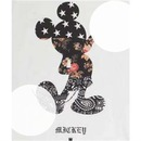 Mickey SWAG~2 photos