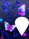 mariposas con luz