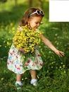 Reve de fleurs