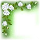 virágos keret