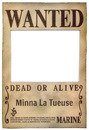 One Piece Wanted !