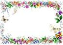 cadre papillon fleurs