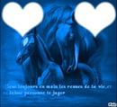 coeur cheval