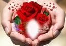 Manos con rosas y corazones