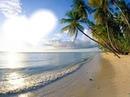 plage tres belle!!