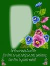 Cc flores mas frase