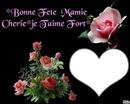 fétes de nos Mamies dimanche 3 mars