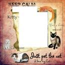 kid cats