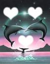 dauphins bleu
