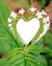 Divino corazón natural con flores