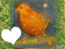 Canari orange dessiné par Gino GIBILARO avec deco picmix
