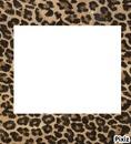 cadre léopard carré + 1 photo