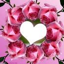 mi corazon en rosas