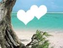 amour océan
