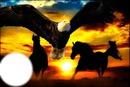 rencontre de l aigle et du cheval