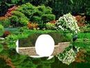 mon jardin 02