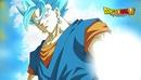 DRAGON BALL SUPER / SUPER GOGETA
