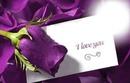 message a la rose