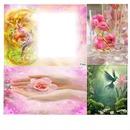 Cadre avec fleurs & autres