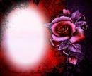 fleur rouge et violet gothique