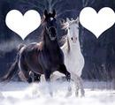 caballos romanticos