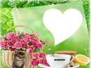 lindas flores para ti