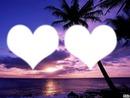 coeur palmier