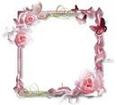 Marco de rosas y mariposas 2