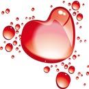 cœur 1 photo
