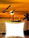 Bateau-oiseaux-coucher de soleil