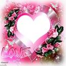 1 photos