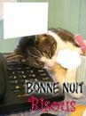 chat qui dort sur téléphone 2 photos