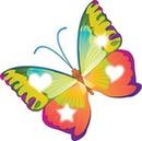 mariposa 4 fotos