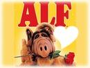 alf rose