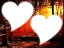 corazones en el bosque