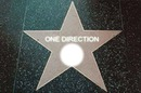 One directioner of Fame
