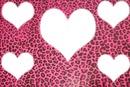 coração da onça rosa