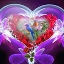 renewilly corazon y pajaros