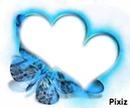 papillon bleu néon