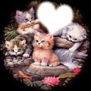 Au paradis des chats
