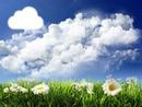 nuages blancs