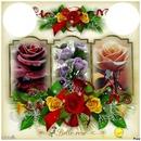Cadre rose 2 photos