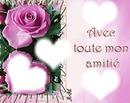 rose coeur scène