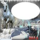 cadre cheval blanc*