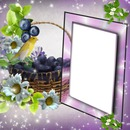 Cadre violet raisins
