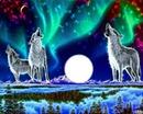 Loup en 3d
