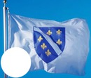 Bosnjacka zastava 2