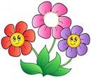 Cc tres flores